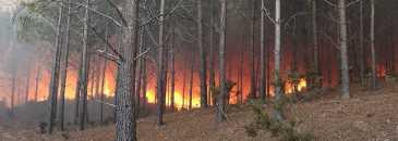 Incêndio de 2017