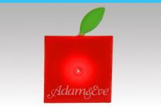 adam_0067_web
