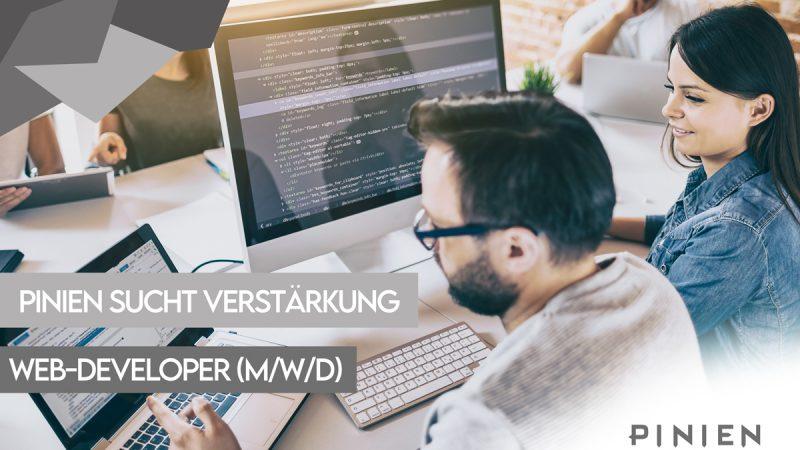 web-developer-stellenanzeige