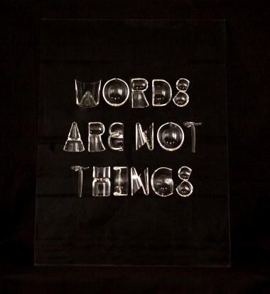 WordsAreNotThings_12