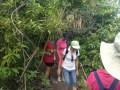 BNT trip