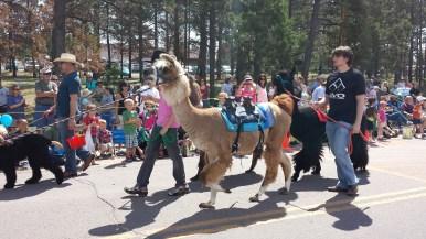 Black Forest Parade