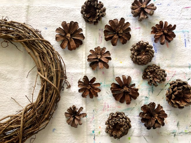 Pinecone selection - Pink Bows & Twinkle Toes