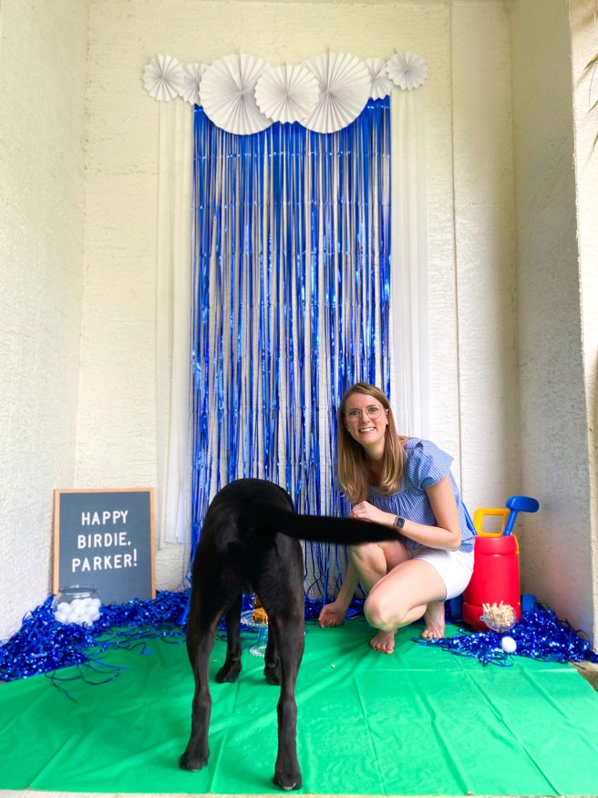 Black lab with dog cake, blonde woman, and photo backdrop - Pink Bows & Twinkle Toes