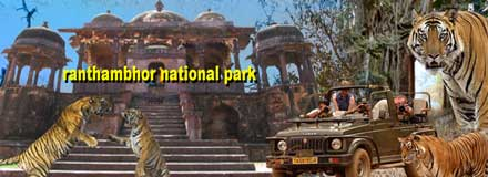 ranthambhor-national-park