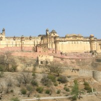 amber-fort-782102