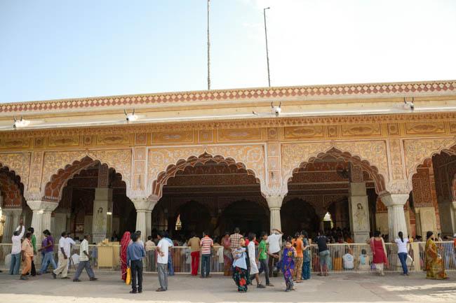 jaipur-143