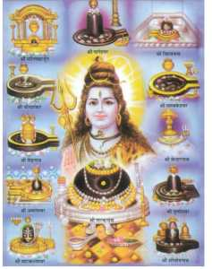 Savan-month-most-sacred-shiva-devotees