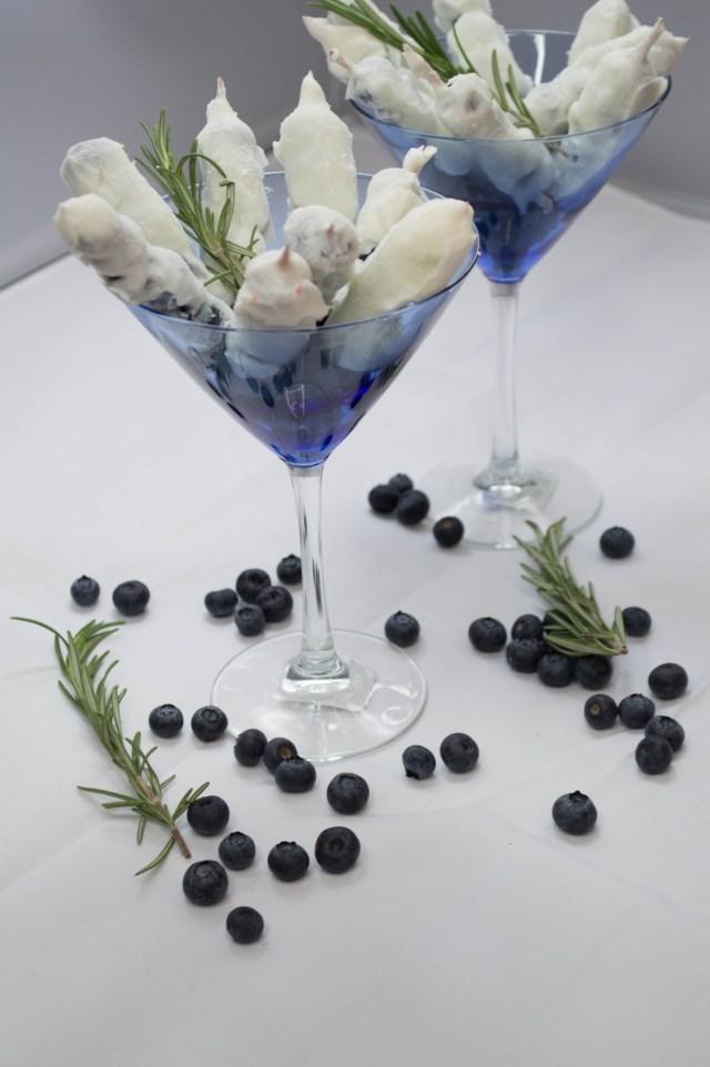 Blueberry Yogurt Kabobs (9 of 13)