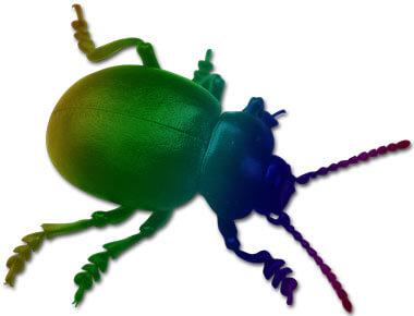 New beetle?