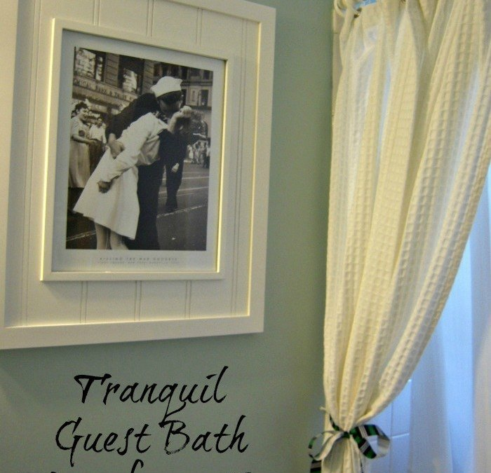 Tranquil Guest Bath Transformation