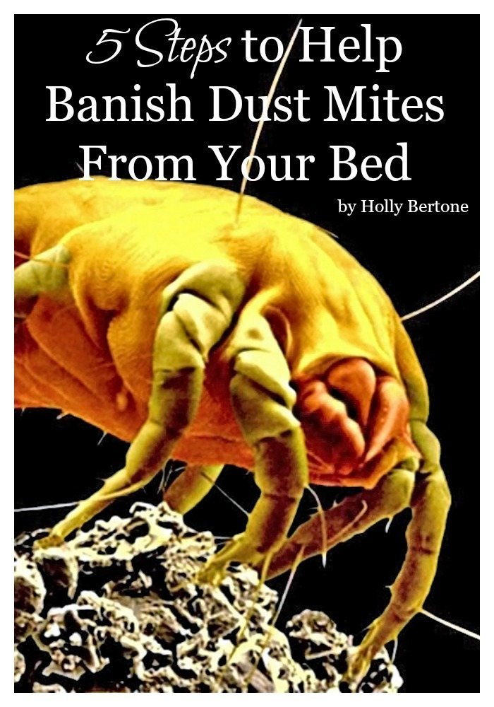 The kids are sound asleep... you retire to your lavender-scented bedroom, your 400 thread count sheets, and you lay down on your tempurpedic pillow, ready to fall soundly asleep on skin flakes and feces. Whoa... WHAT?!?!? Yes, your bed is filled with dust mites and their poop. They feed off your skin flakes and then produce waste. Ewwww!!!! I know I've totally grossed you out at this point, so today I'm sharing five steps to help banish dust mites in your bed so you can wake up not sniffling and sneezing as much.