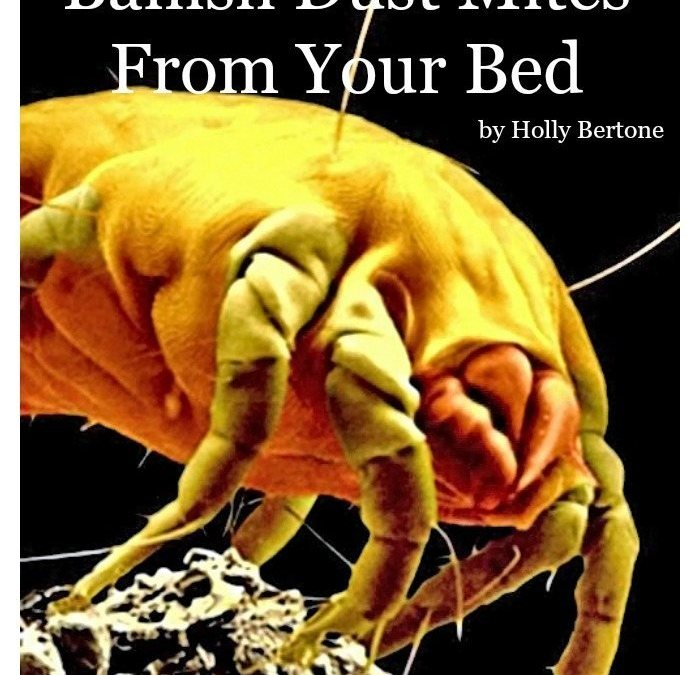 5 Steps to Help Banish Dust Mites From Your Bed