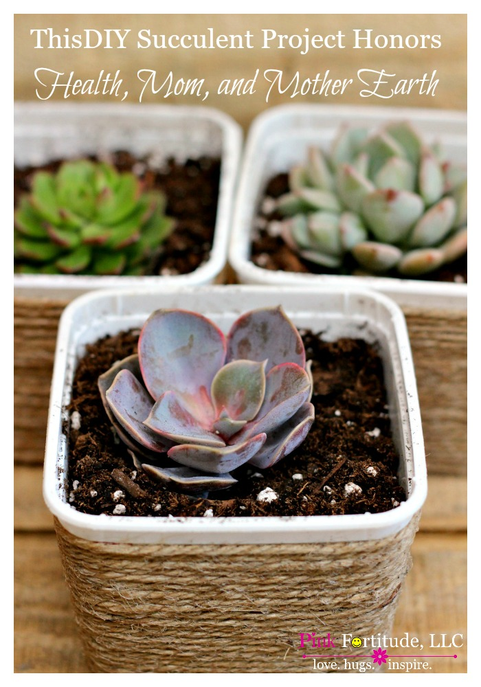 One year I made some big health changes. To celebrate my new lifestyle, I upcycled my first container of vegan food into this adorable DIY for succulents. Today, this project is not only honoring my health, but also Mom, and Mother Earth.