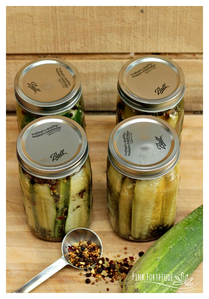 You have an overload of cucumbers in your garden and decide that canning pickles is the best way to perpetuate the harvest. But which method is best - the traditional canning method? Or the new flash fridge method? I'll take you through both step-by-step and let my favorite taste-testers share which one method tastes the best.