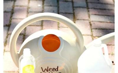 All Natural Weed Killer DIY