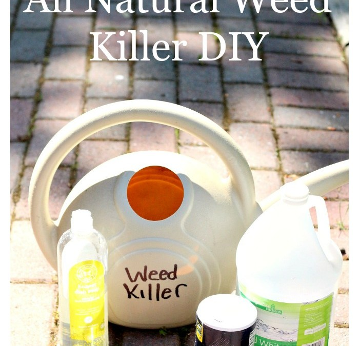 All Natural Weed Killer DIY