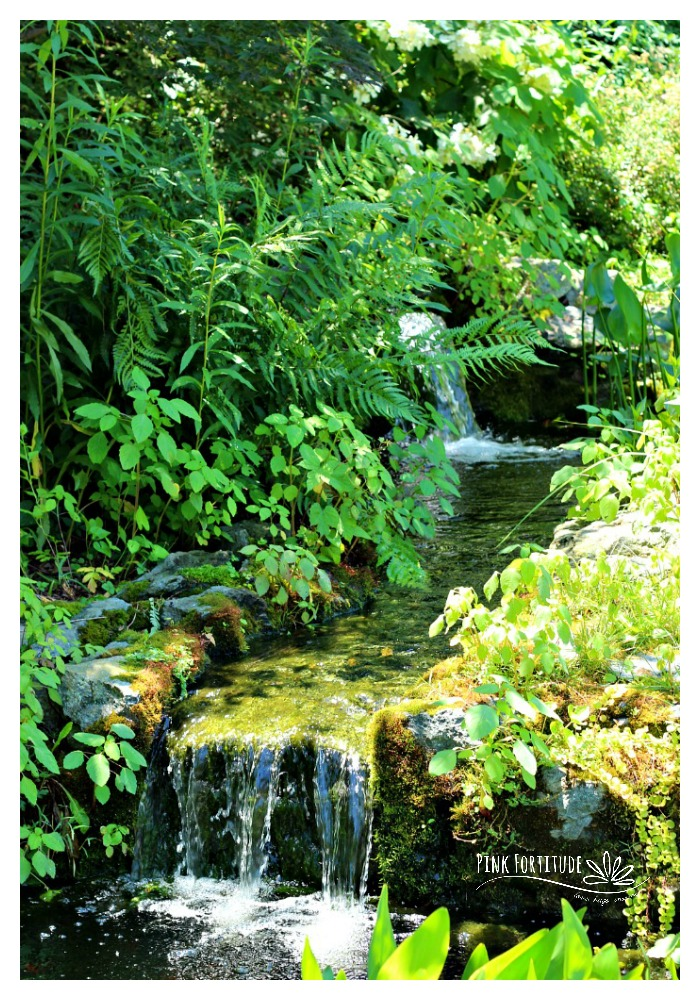 Just 10 miles away from our Nation's Capital, this Alexandria, Virginia suburb boasts several homes which are committed to conservation and sustainability. More than adding a rain barrel, you will be amazed at the beautiful and creative features we found in these backyards. What ideas do you have to create for your own garden?