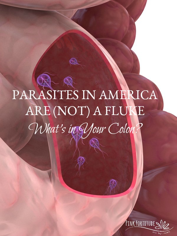 I knew I was sick, but I didn't realize how toxic my body was until I released 8 parasites (flukes) through my urine. One was still swimming! Yes, this is a gross topic to discuss, but they are more common than you think and there is a good chance that you could be hosting one or more parasites in your body. Did you know they can live inside of you for YEARS? Read on to find out how common parasitic infections are, and what you can do to help remove and prevent them...