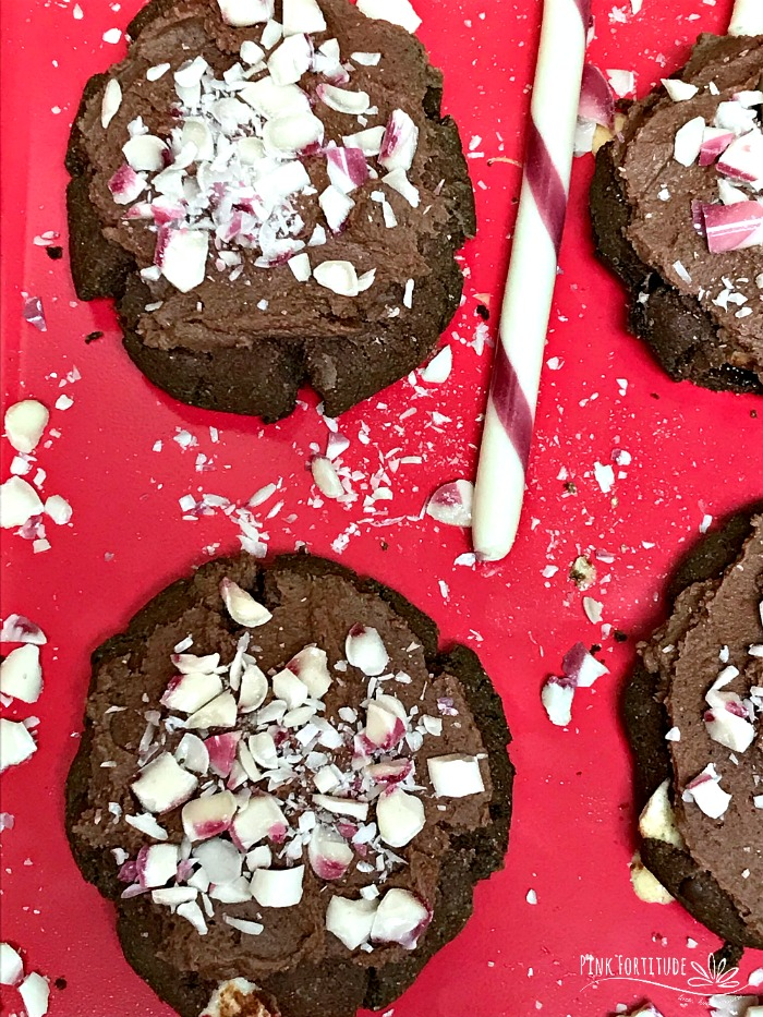 The warmth of a cup of hot chocolate. The zing of a little peppermint. All in a cookie. That PS is gluten free and vegan. This cookie puts it together with all of the flavor, but none of the sugar crash. Eat it. Dunk it. Take it to a cookie exchange. Leave it out for Santa. Just don't call it ordinary. I know you want the recipe...