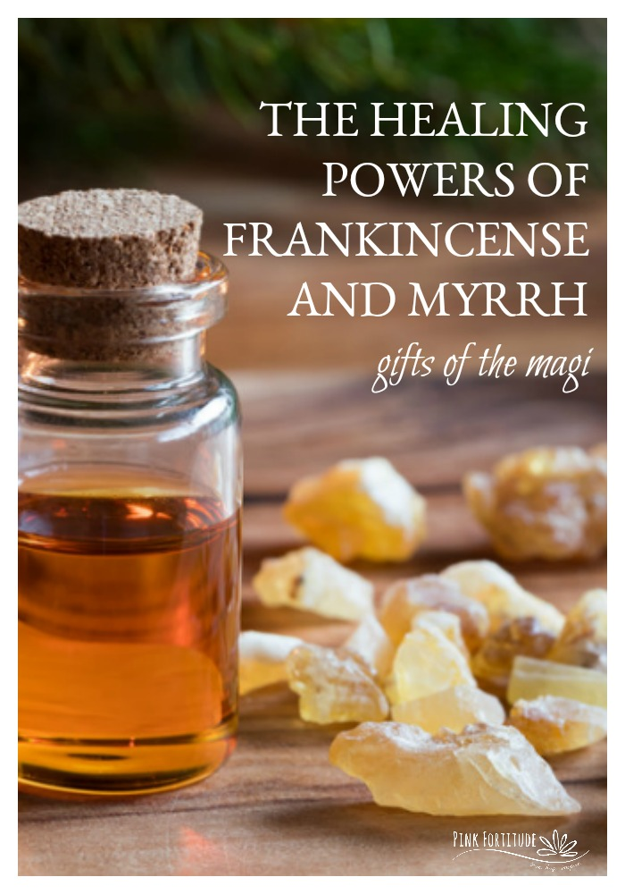 how to grow frankincense and myrrh
