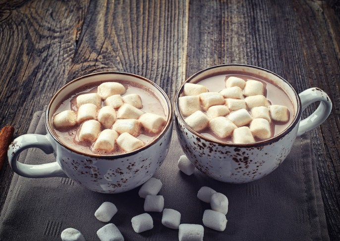 Is there anything cozier in the winter than sitting by the fire and enjoying a warm cup of cocoa? If you are looking for a vegan hot chocolate that is thick and creamy and delicious and Paleo and even healthy for you, this is the only recipe you will need. Put on your PJs and comfy socks and join me! #hotchocolate #vegan #pinkfortitude