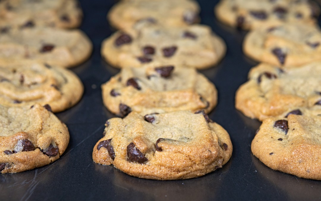Best Ever Chocolate Chip Cookies – Gluten Free + Dairy Free + Egg Free