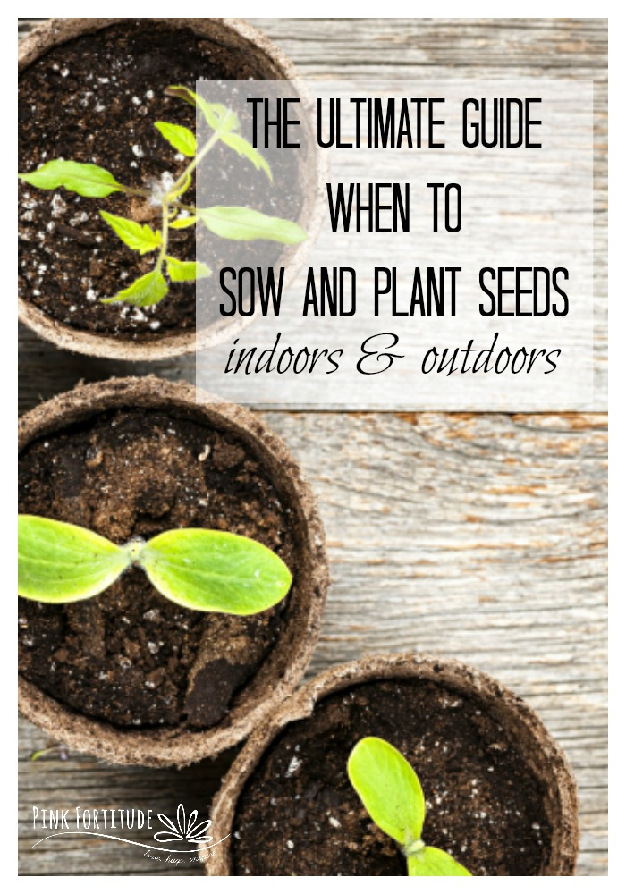 If you live in the United States or Canada and are wondering when to sow and plant seeds for your garden, this is the ultimate guide! We'll cover all of the basics including how to find your Plant Hardiness Zone, when is the last frost, and when to begin sowing seeds both indoors and also outdoors in your garden. This guide will focus on your vegetable garden, but the concept will work for any kind of seeds. Let's start growing!