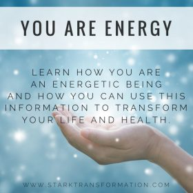 You Are Energy Course by Amy Stark