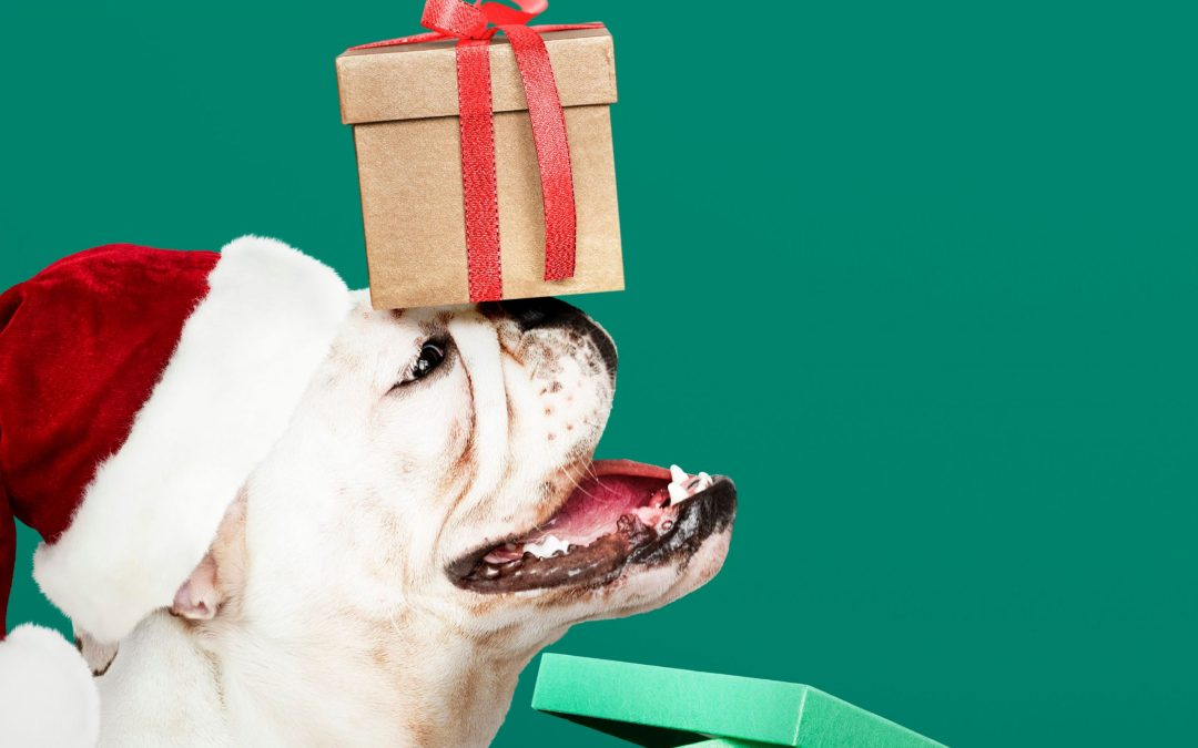 Holiday Gift Guide for Your Dog – Support Small Businesses!