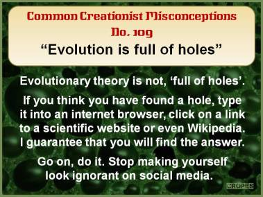 Evolution is full of holes