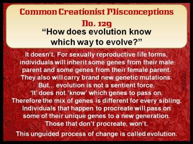 How does evolution know which way to evolve?
