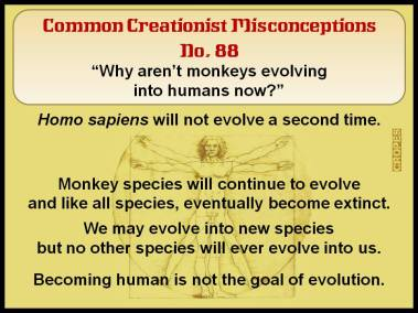 CommonCreationistMisconceptions_088