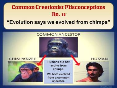 Evolution says we evolved from chimps.