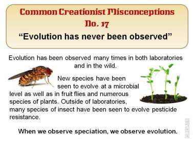 Evolution has never been observed.