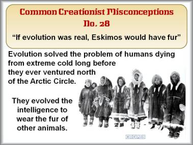 If evolution was real, Eskimos would have fur.