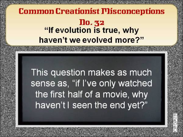 If evolution is true, why haven't we evolved more?