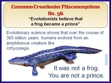 Evolutionists believe that a frog became a prince