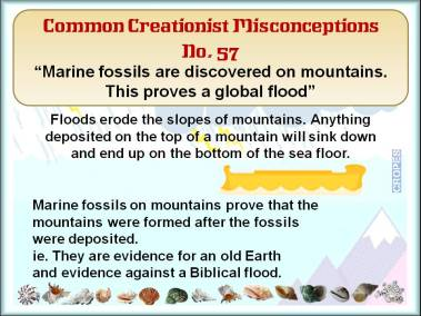 Marine fossils are discovered on mountains. This proves a global flood.