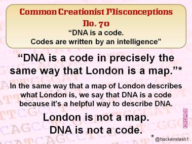 DNA is a code. Codes are written by an intelligence.