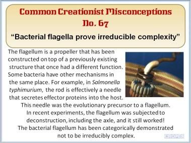 Bacterial flagella prove irreducible complexity.