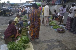 Local haat at Diglipur (2)
