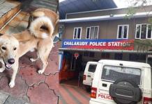 Suku guards Chalakudy Police Station