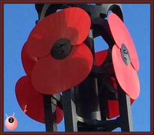 Remembrance Sunday Poppy Day