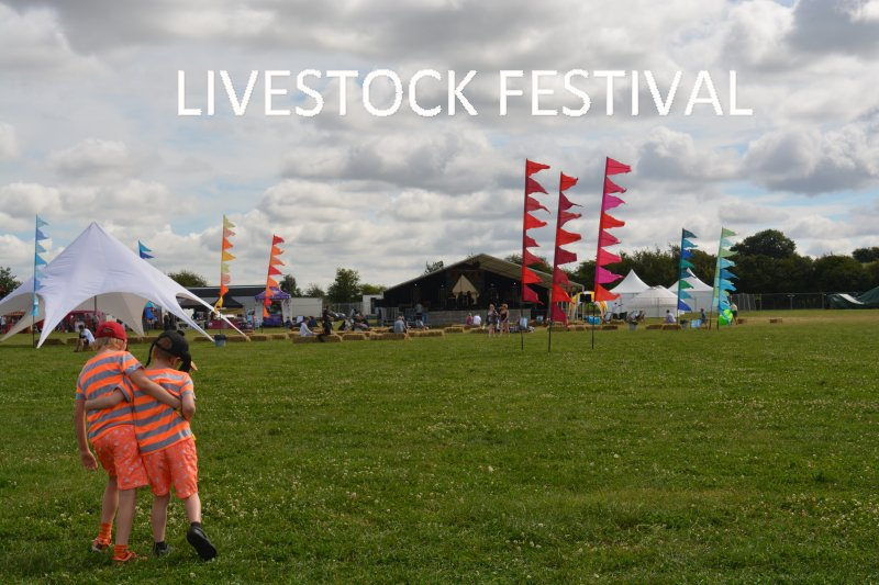 Livestock Festival for Children