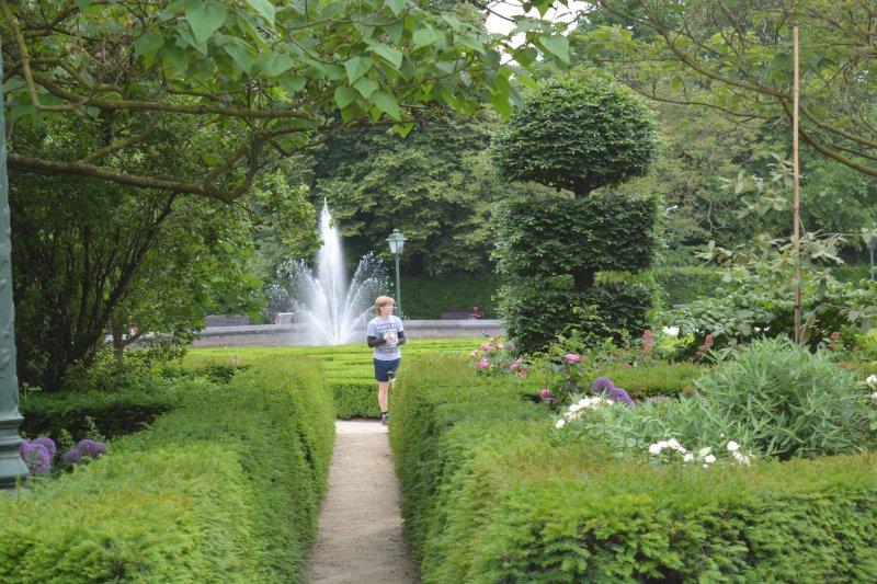 beautiful garden with boy and water brussels
