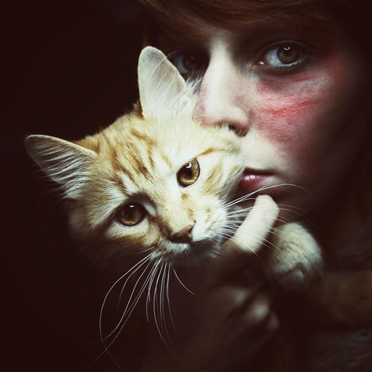 Portrait of a Cat by Rengim Mutevellioglu
