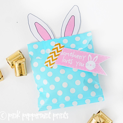 Free Printable: Easter Egg Hunt Party Favor Somebunny Loves You