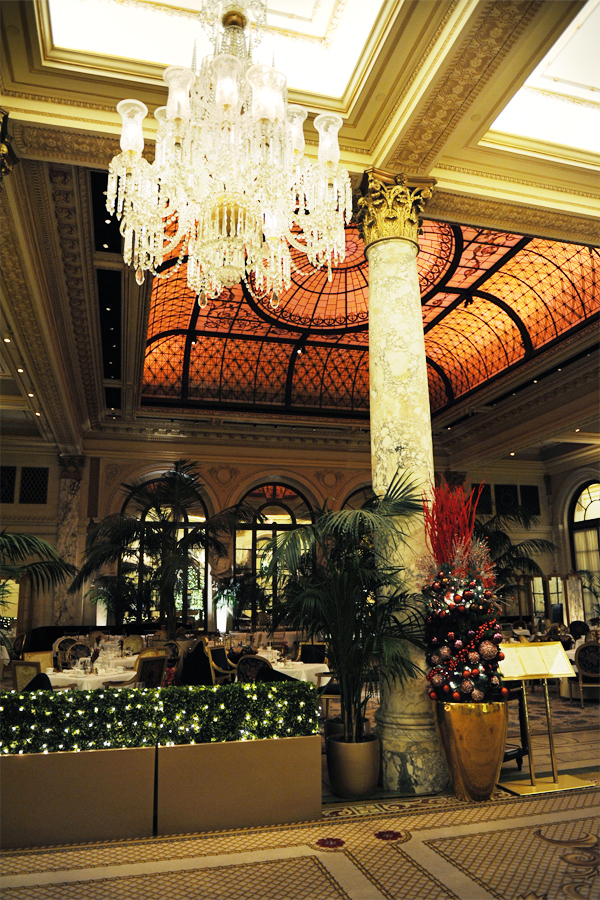 palm court 1 lower res