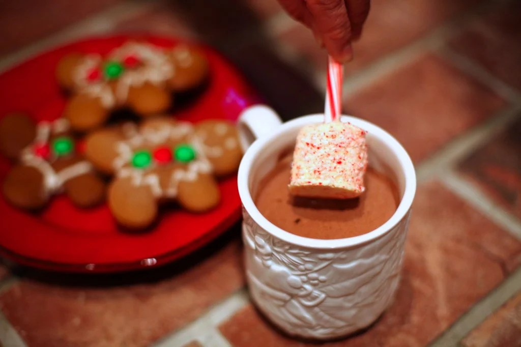 Heavenly Hot Chocolate with Candy Cane Stirring Sticks